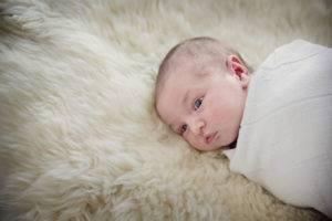 Newborn manta pelo estudio